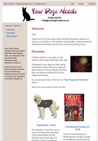Your Dogs Needs Newsletter Example