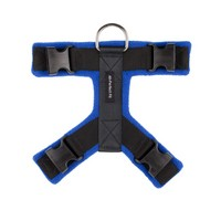 Blue 40mm Harness