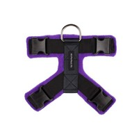 Purple 40mm Harness