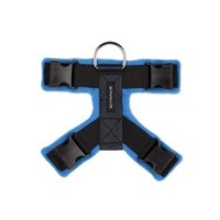 Sky Blue 40mm Harness