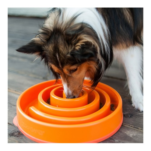 Outward Hound Fun Feeder 1