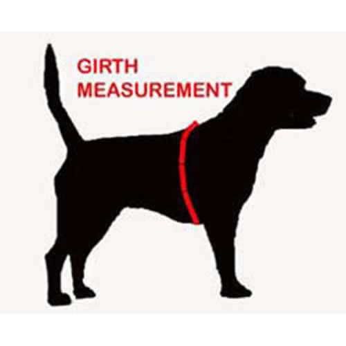 Perfect Fit Dog Harness Uk
